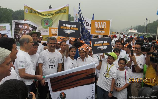 29-07-2016-international-tiger-day-celebrations-india-gate